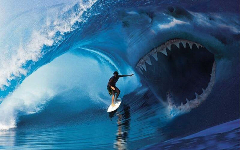 risk-of-extreme-sports-top coolest extreme sports for men