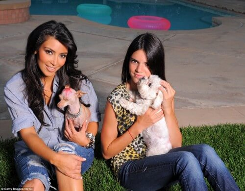 Kardashians-pet-1-the kardashian family